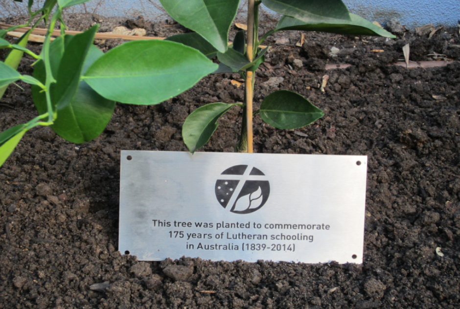 175 Years of Lutheran Education